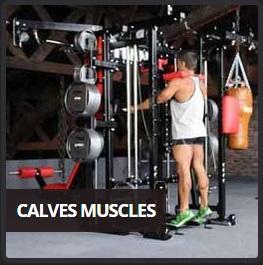 Multifunkcijska fitnes naprava vaje